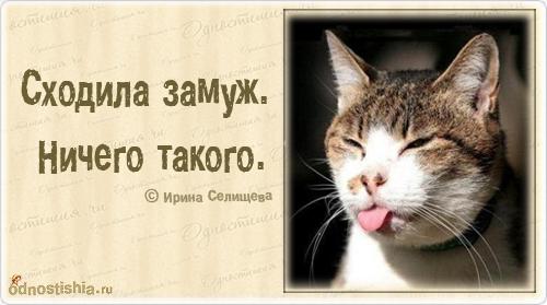 афоризмы в картинках. - Самое интересное в блогах: http://www.liveinternet.ru/tags/%C0%F4%EE%F0%E8%E7%EC%FB+%E2+%EA%E0%F0%F2%E8%ED%EA%E0%F5./